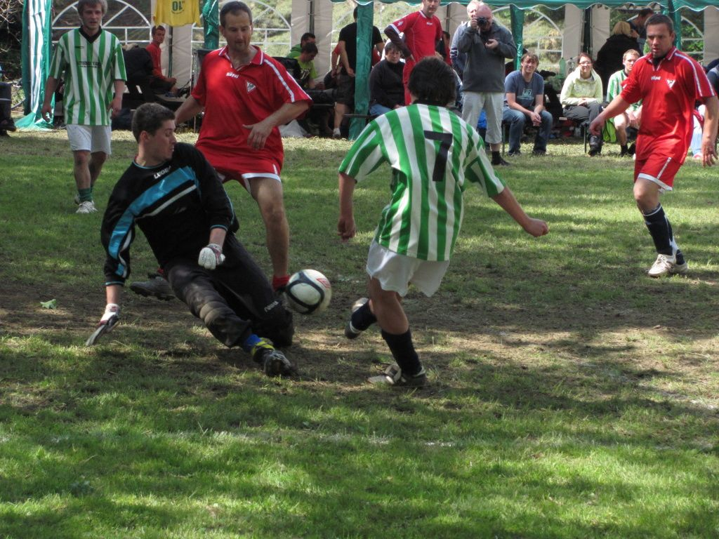 WoodCup 2012